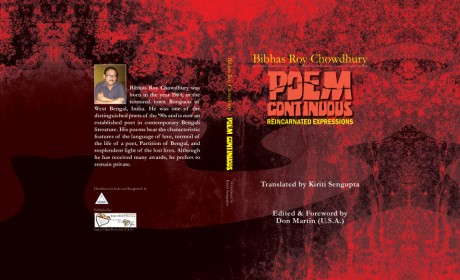 Book Review: Poem Continuous – Reincarnated Expressions
