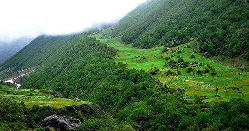 Nanda Devi National Park