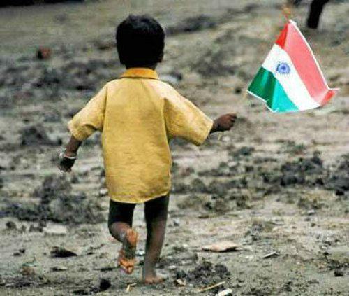 Image source: indiaopines