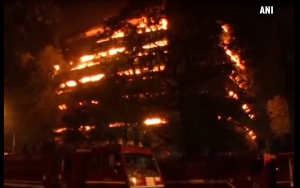 Here's what you need to know about the fire at Delhi's Museum of Natural History