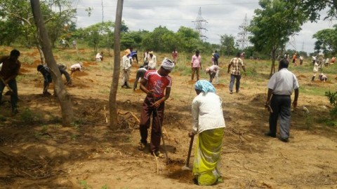 "CREDAI Hyderabad pledges support to ""Telangana Ku Haritha Haram"""