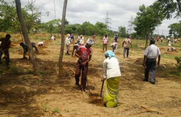 "CREDAI Hyderabad pledges support to ""Telangana Ku Haritha Haram"""