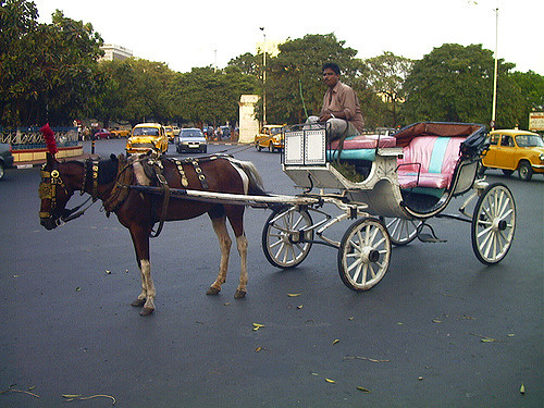 The Faded Means of Transport of India