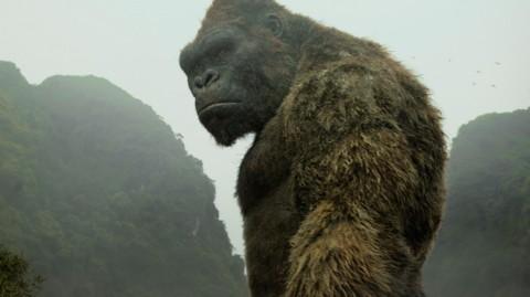 Movie Review: 'Kong: Skull Island'