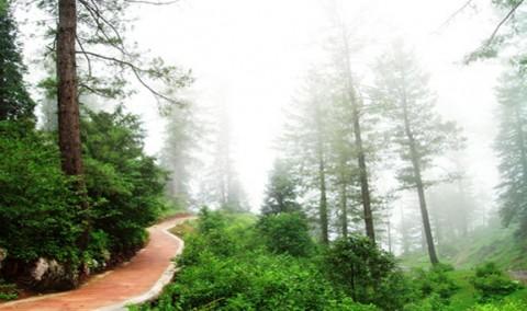 Daringbadi – Kashmir of Odisha